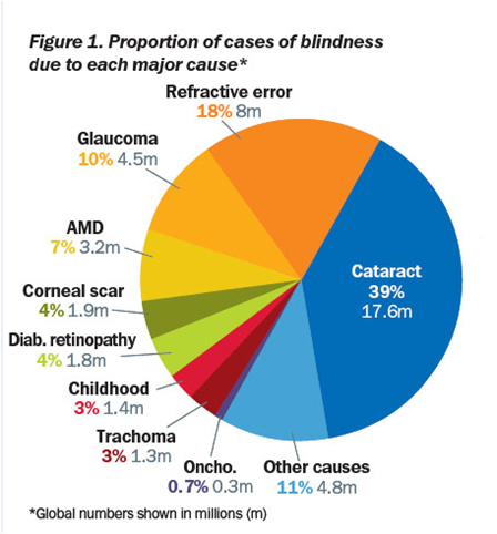 graph_world_blindness